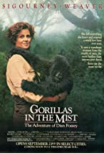 Primary image for Gorillas in the Mist