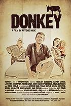 Image of Donkey