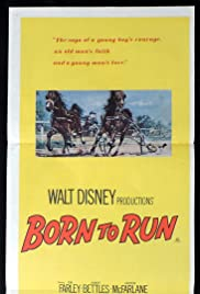 Born to Run Poster