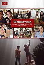 Wondernesia