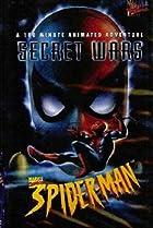 Image of Spider-Man: Secret Wars