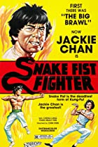 Image of Snake Fist Fighter