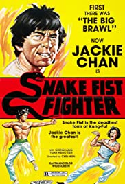 Snake Fist Fighter Poster