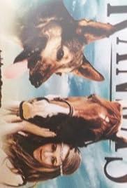 Kansas Poster