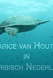 Carice van Houten in Caribisch Nederland Poster
