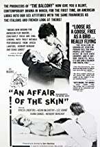 Primary image for An Affair of the Skin