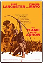 Primary image for The Flame and the Arrow