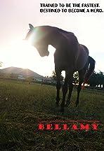 Tomorrow's Horse