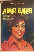Image of Amir Garib