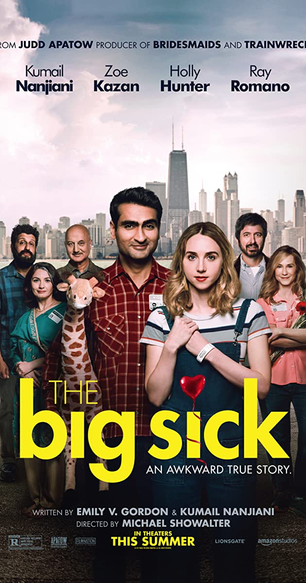 Image result for the big sick movie poster
