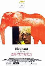 Primary image for Elephant