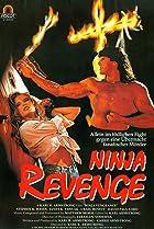 Image of Ninja Vengeance