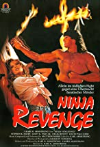 Primary image for Ninja Vengeance