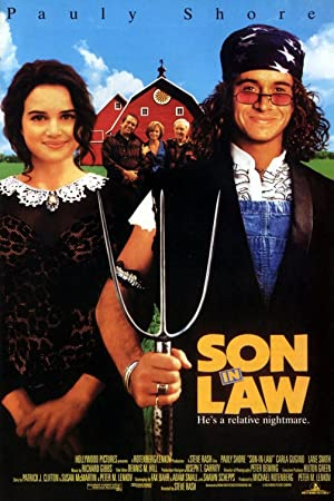 Son in Law poster