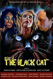 POE 4: The Black Cat Poster