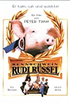 Image of Rudy, the Racing Pig