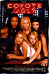 Where are the cast of Coyote Ugly now? Here's what happened to Piper Perabo, LeAnn Rimes and the coyotes