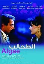 Al-tahaleb
