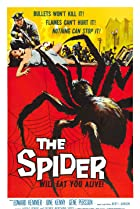 Image of The Spider