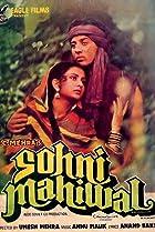 Image of Sohni Mahiwal