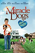 Image of Miracle Dogs