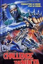Image of Challenge of the Ninja