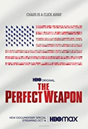 The Perfect Weapon (2020) poster