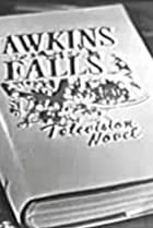 Image of Hawkins Falls: A Television Novel