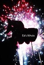 Ed's Whale