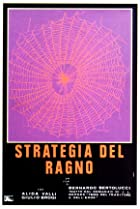 Image of The Spider's Stratagem