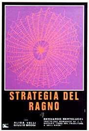 The Spider's Stratagem Poster