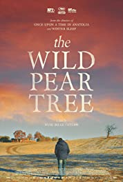 The Wild Pear Tree poster