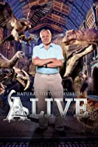 Image of David Attenborough's Natural History Museum Alive