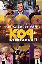 Image of Kopspijkers
