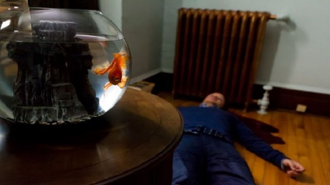 """what of this gold fish would you wish """"what, of this goldfish, would you wish"""" begins with yonatan, an israeli filmmaker who comes up with """"a brilliant idea for a documentary""""."""