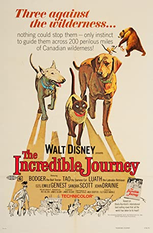 The Incredible Journey poster