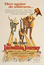The Incredible Journey (1963) Poster - Movie Forum, Cast, Reviews