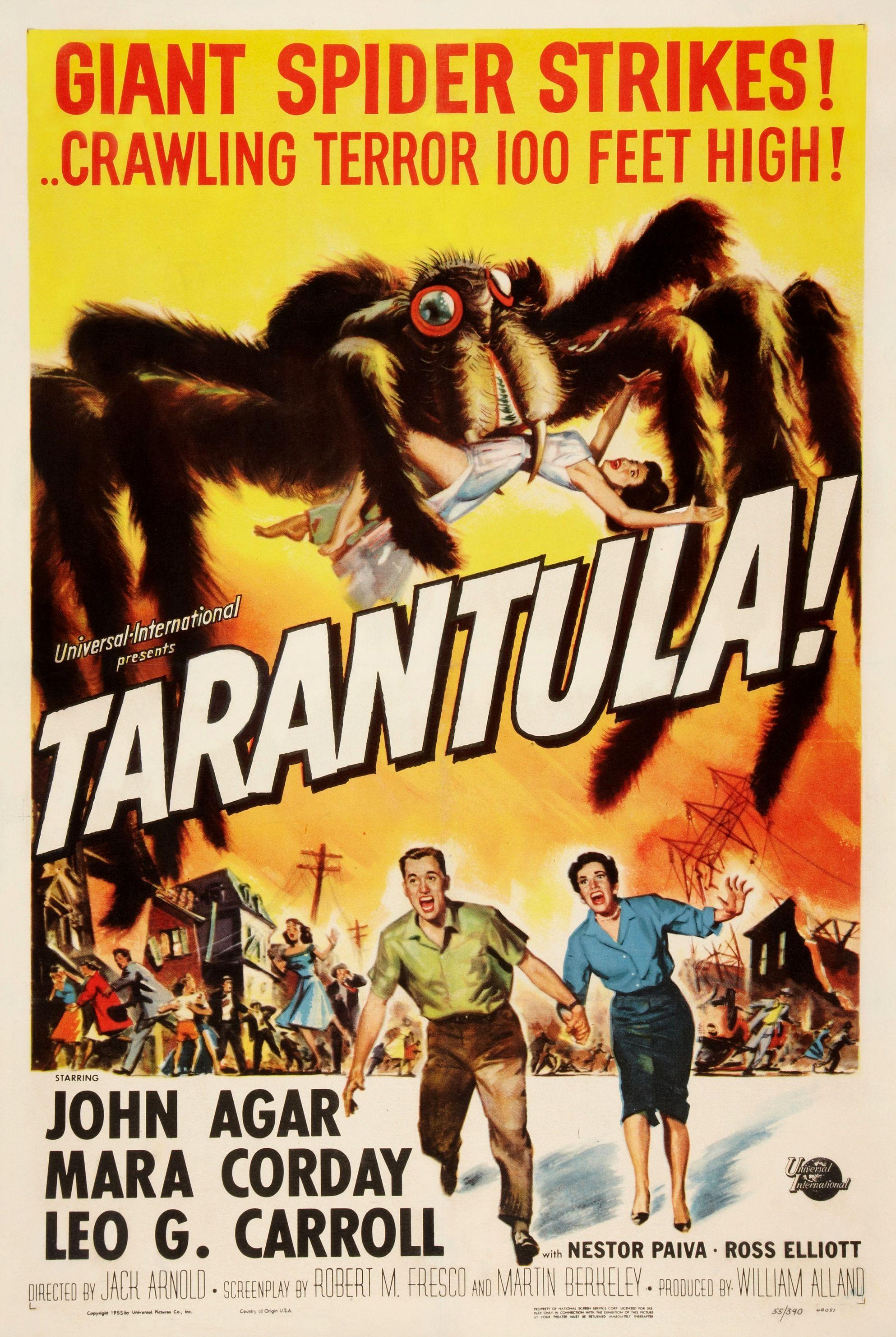 image Tarantula Watch Full Movie Free Online