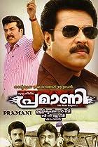 Image of Pramani
