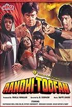 Image of Aandhi-Toofan