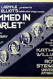 Trimmed in Scarlet Poster