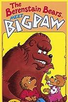 Image of The Berenstain Bears Meet Bigpaw
