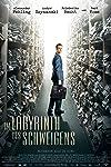 Im Labyrinth des Schweigens (2014)