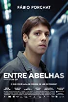 Image of Entre Abelhas