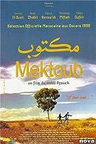 Image of Mektoub
