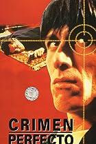 Crimen perfecto (1995) Poster