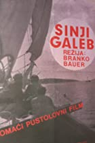 Image of Sinji galeb