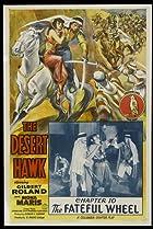 Image of The Desert Hawk