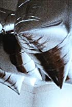 Image of Silver Flotations