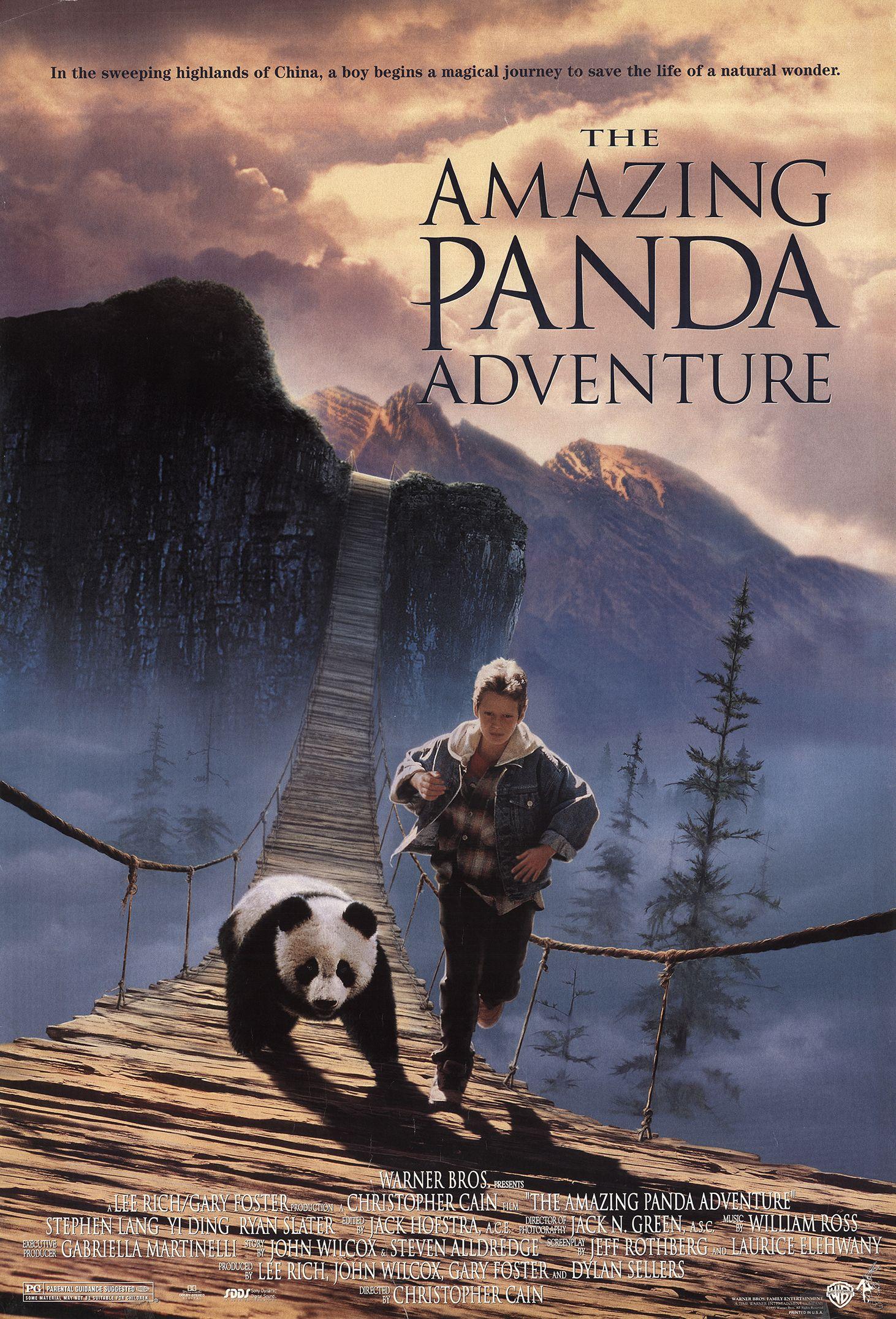 The Amazing Panda Adventure (1995)
